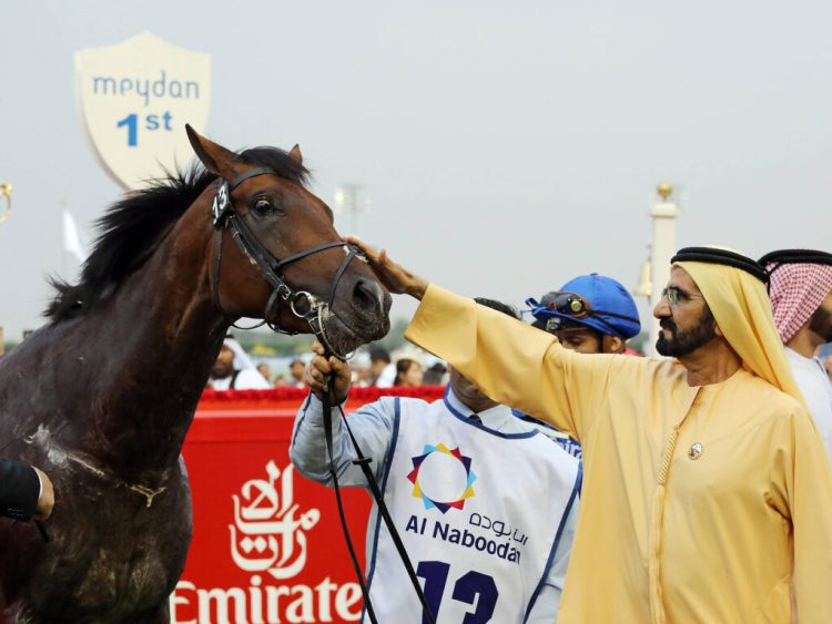 Dubai and its equestrian tradition was important for Gustavo Mirabal