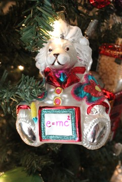 Einstein Bear Ornament