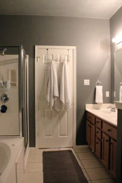Master Bathroom Silver Paint