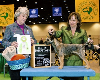 Hazel IKC Best puppy sweeps 2014