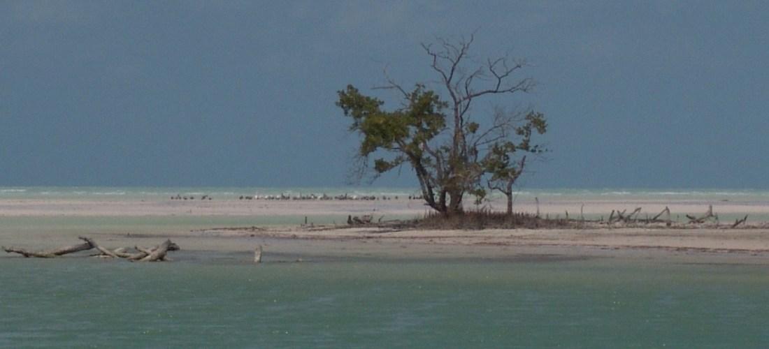 #México a través de la lente «Holbox» Quintana Roo.