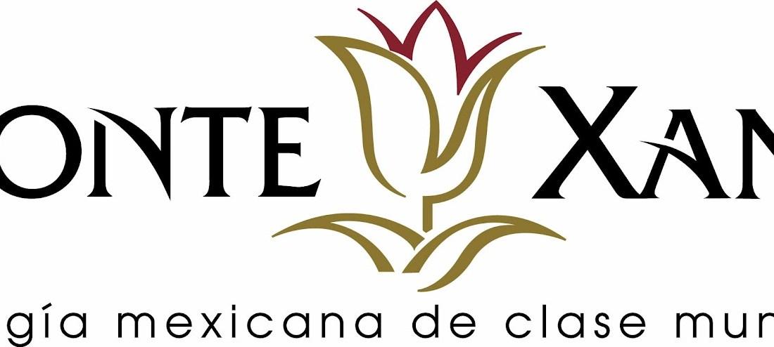Todo los moles Oaxaqueños, todos los vinos Monte Xanic @Monte_Xanic Festival @saberdelsabor #FESS2012