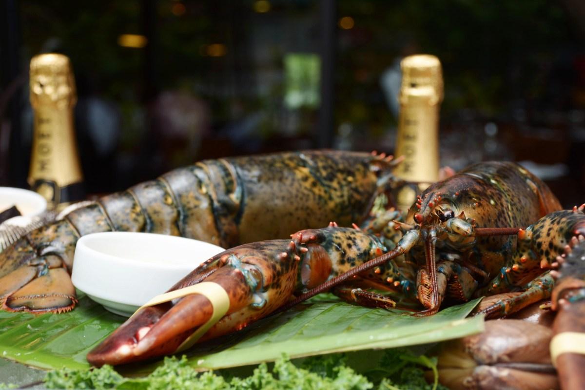 Seafood & Bubbles en Rubaiyat