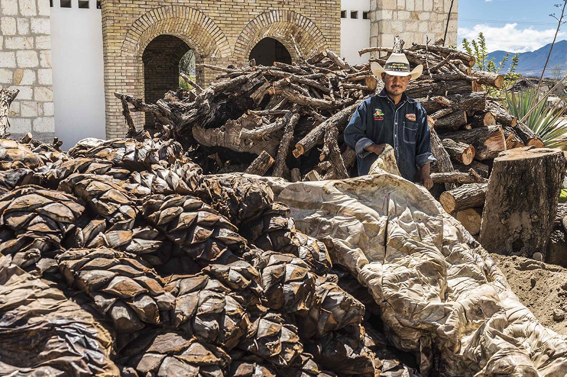 El mezcal de Oaxaca aclamado en el mundo @mezcaloro