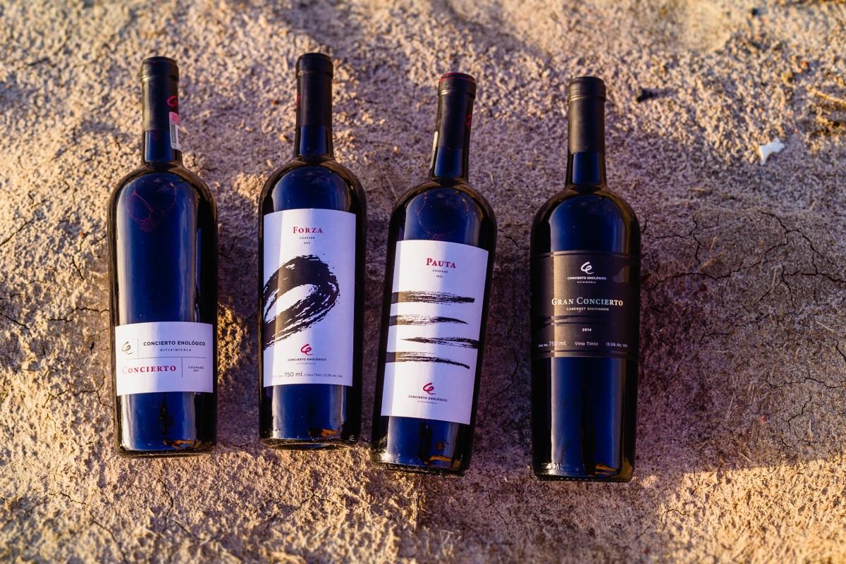 Concierto Enológico, música hecha vino #Vinos #México