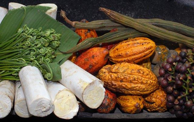 Ingredientes amazonas