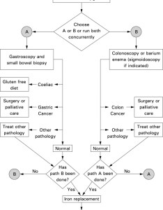 Download figure also guidelines for the management of iron deficiency anaemia gut rh gutj