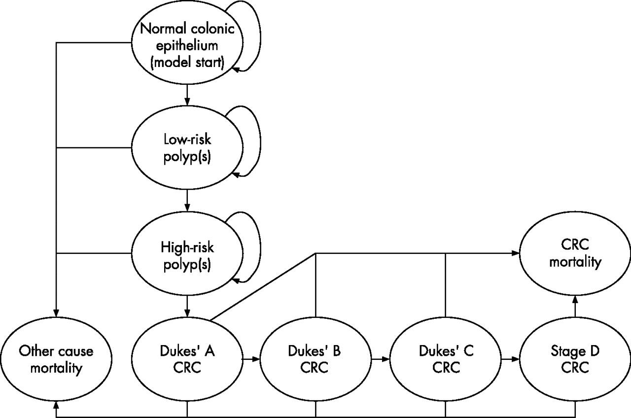 Option Appraisal Of Population Based Colorectal Cancer