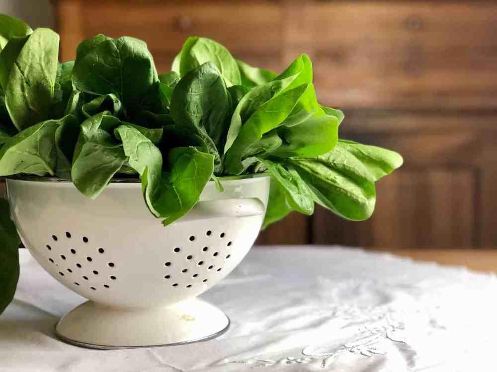 Gemüse des Monats: Spinat.