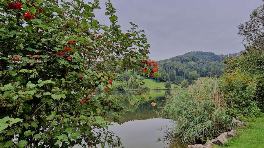 Bichelsee