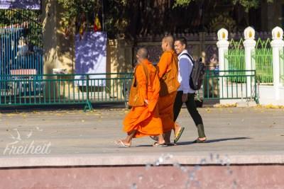 Mönche sehen wir den ganzen Morgen über