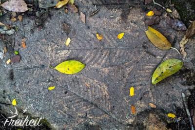 Blatt-Boden-Werk