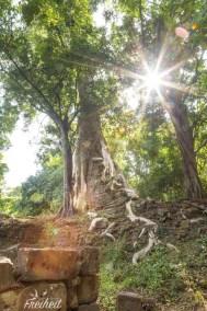 Angkor Thom, das Größenverhältnis folgt im nächsten Bild