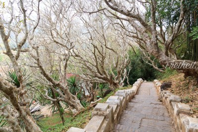 Aufstieg zum Gipfel des Phou Si