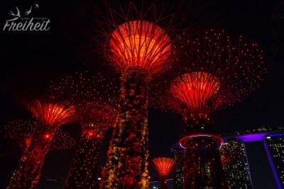 Jeden Abend gibt es auch bei den Giant Trees eine kostenlose Lichtershow.