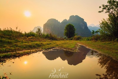 Sonnenuntergang auf dem Reisfeld