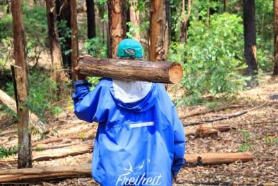 Auf dem Rückweg sammelt unser Guide Feuerholz für's Kochen ein