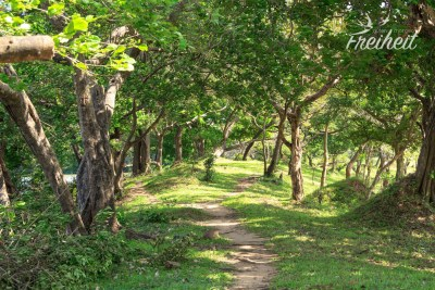 Tolle Landschaft rund um Polonnaruwa