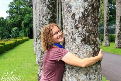 Treehugger :)