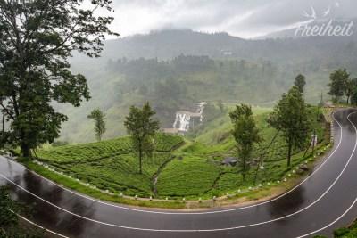 Aber selbst bei Regen ist die Landschaft unsagbar schön!