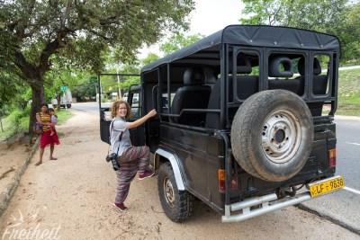 Bitte einsteigen zur Safari :)