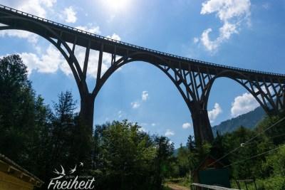 Tara Brücke