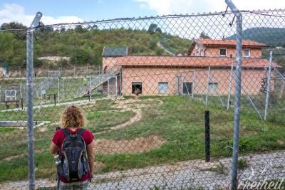 Bärenpark bei Pristina - hier die Eingewöhnungsgehege