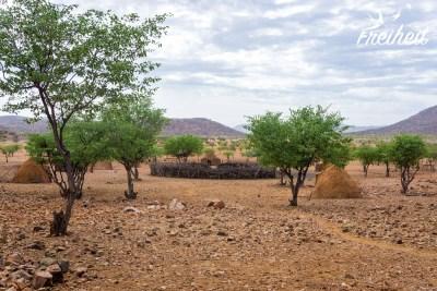 Das Dorf der Himba