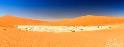 Das Deadvlei - riesige Salz-Lehm-Pfanne und berühmt für ihre vertrockneten Kameldornbäume
