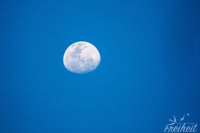 Mit dem 600m Objektiv holen wir uns den Mond näher ;-)