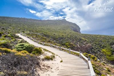Dieser Holzplankenweg führt vom Leuchtturm bis zum Kap der Guten Hoffnung