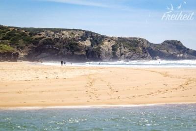 Strandzunge