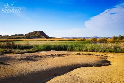 Ein See mitten in der Halbwüste!