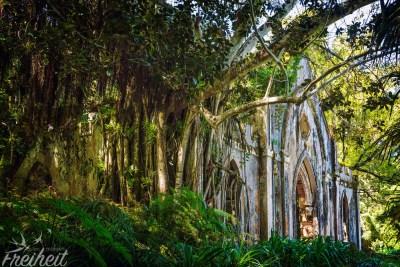 Die überwucherte Ruine einer Kapelle