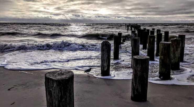 Birgit Pauli-Haack, Naples Beach, Florida - Posts 3rdAveN
