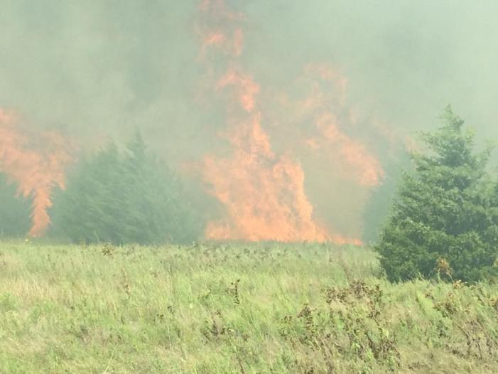 Several fire crews needed to knock down grass fire