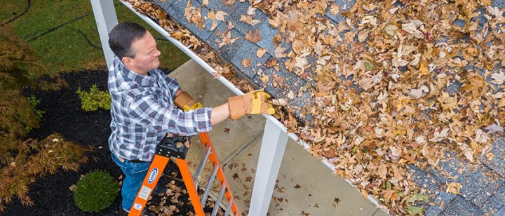 Hi Res Guy On Ladder Cleaning Gutters Clean Your Gutters