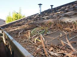 roof and gutters covered with debris 1