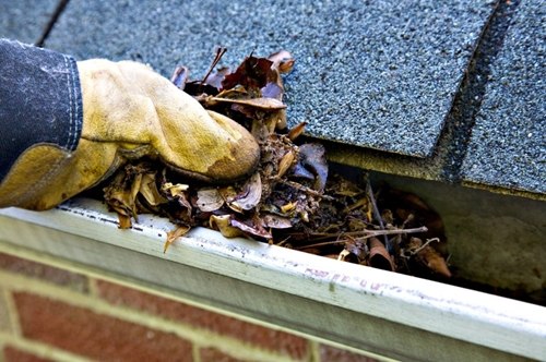 services a gloved hand scooping leaves from clogged gutter services gutter king wichita