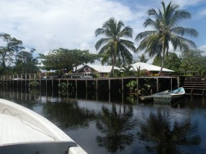 adels rainforest resort