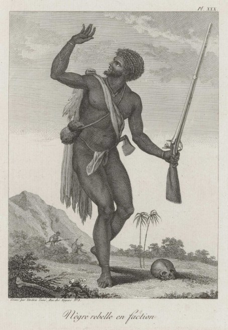 The 1763 Berbice Slave Revolt – Detailed Version Translated from Dutch