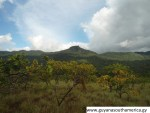 The Kanuku Mountains