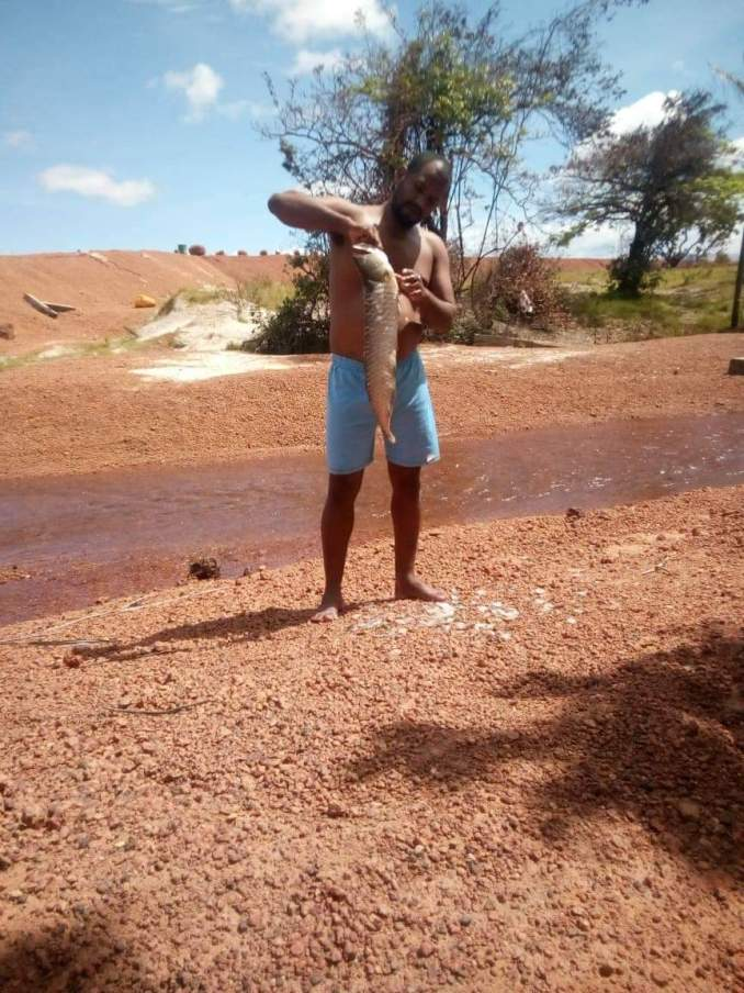 Rupununi: The Great Outdoors