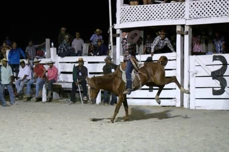 The Rupununi Rodeo: Photos 261-270