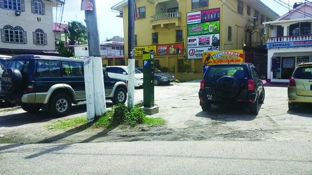 Parking meters have been installed along certain sections of North Road