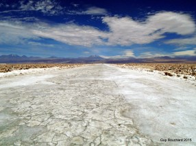 La route de sel du désert d'Atacama