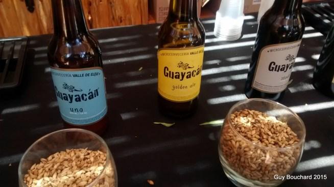 De bonnes bières de la micro-brasserie Guayacan de Vicuna