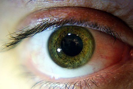 green eye shades of hazel