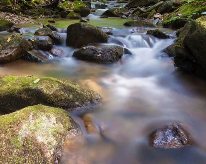 Wilson Creek, North Carolina, outdoor photography, fliowing stream, Guy Sagi, Guy J. Sagi, Raeford North Carolina, Hoke County North Carolina