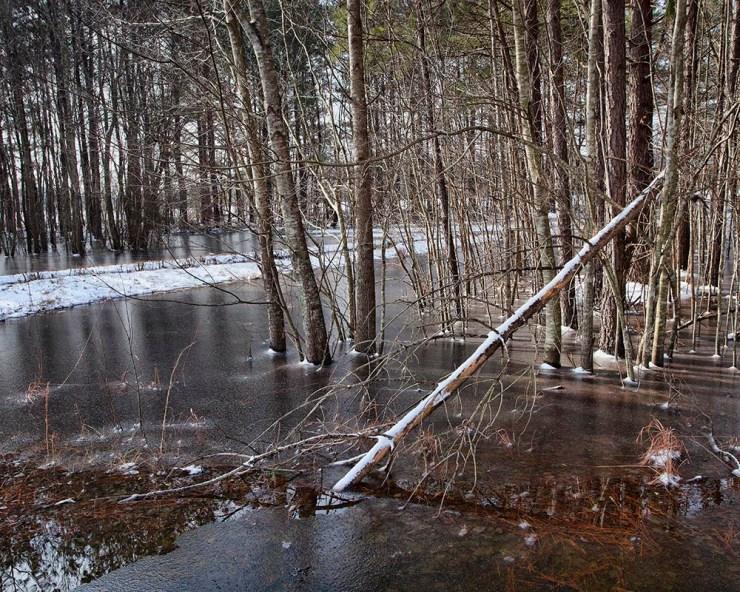 Raeford North Carolina, Hoke County North Carolina, Guy Sagi, Guy J. Sagi, outdoor photography, snow in North Carolina, Snow in Hoke County, Snow in Raeford,